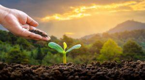 environment-earth-soil-site